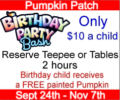 Lynchburg Pumpkin Patch Birthday Party